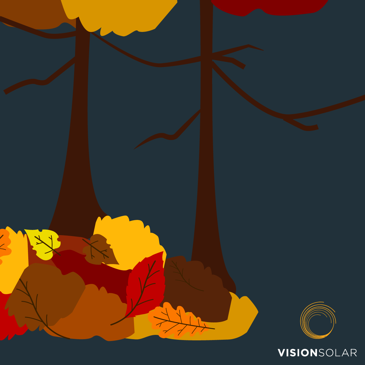 Vision Solar : Solar Power During the Fall